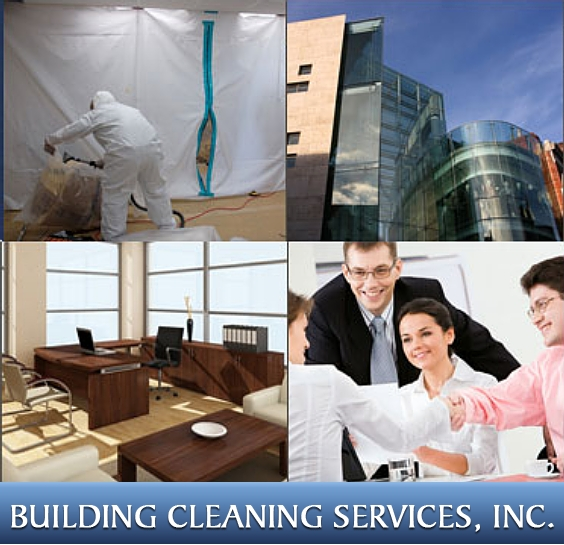 Black Mold, Lawsuits and the Pursuit of a Healthy Environment – Building Cleaning Services
