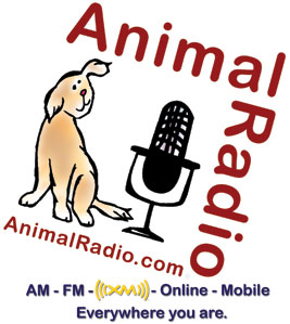 New Wave's DEVO Guests on Animal Radio® with Anti-Romney Satire
